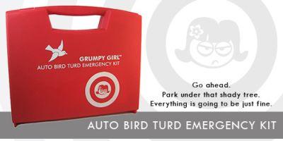 Idea regalo: kit d'emergenza per eliminare subito e con facilità gli escrementi dei volatili dalla superficie dell'auto