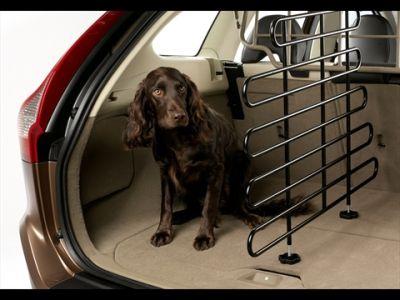 Volvo per Animal Fair Magazine sono vetture più amate anche dai nostri amici a 4 zampe 02