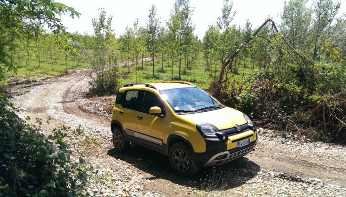Fiat Panda Cross: un po' city car un po' SUV
