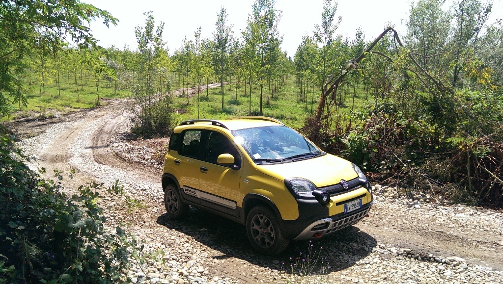 Fiat Panda Cross: un po' city car un po' SUV