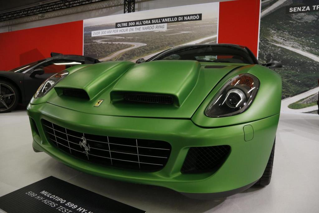 Mulotipo Ferrari 09