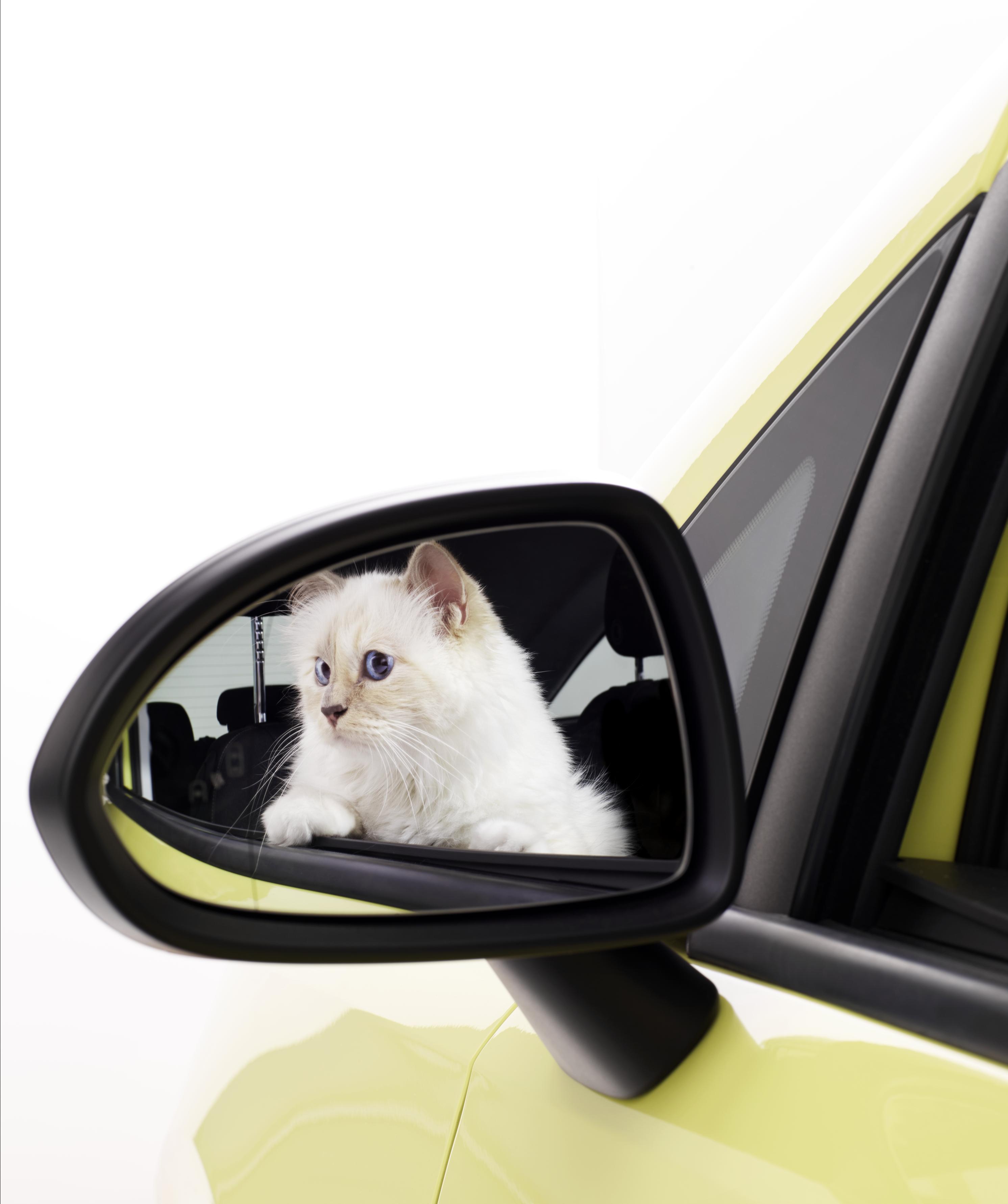 Opel Corsa e Choupette posano per Karl Lagerfeld  3