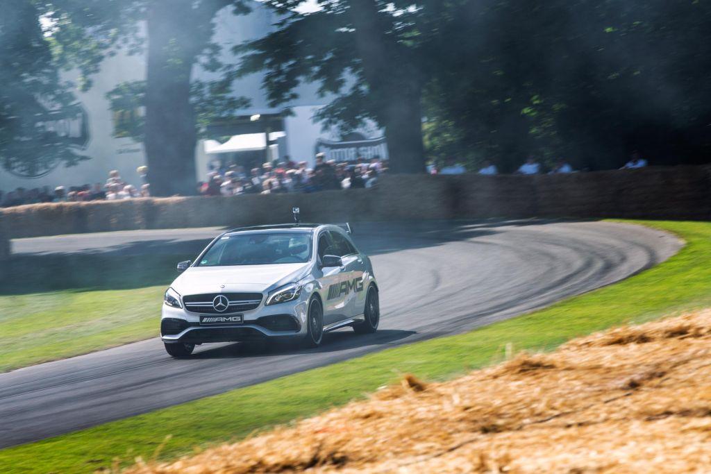 RP - Mercedes Benz Goodwood Festival of Speed-5