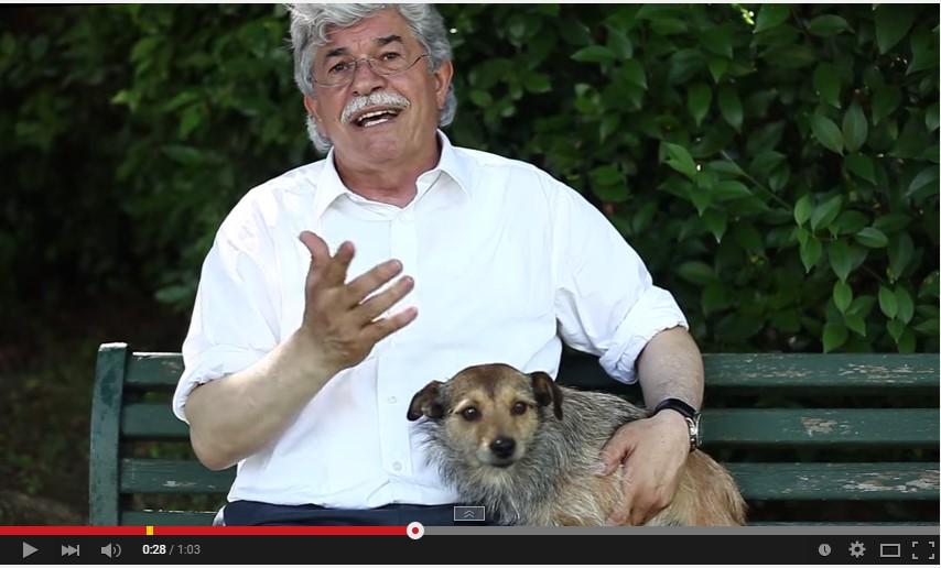 Stop all'abbandono dei cani per strada: scende in campo il senatore Antonio Razzi